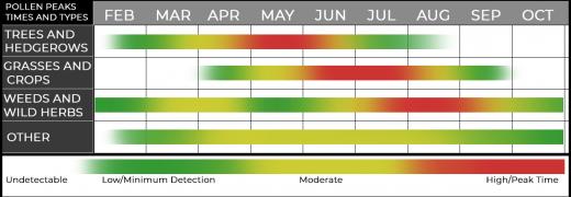 Pollen Scale